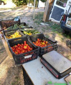 stand de fruits et légumes marché